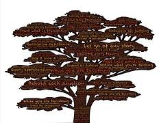 tree-569587__180